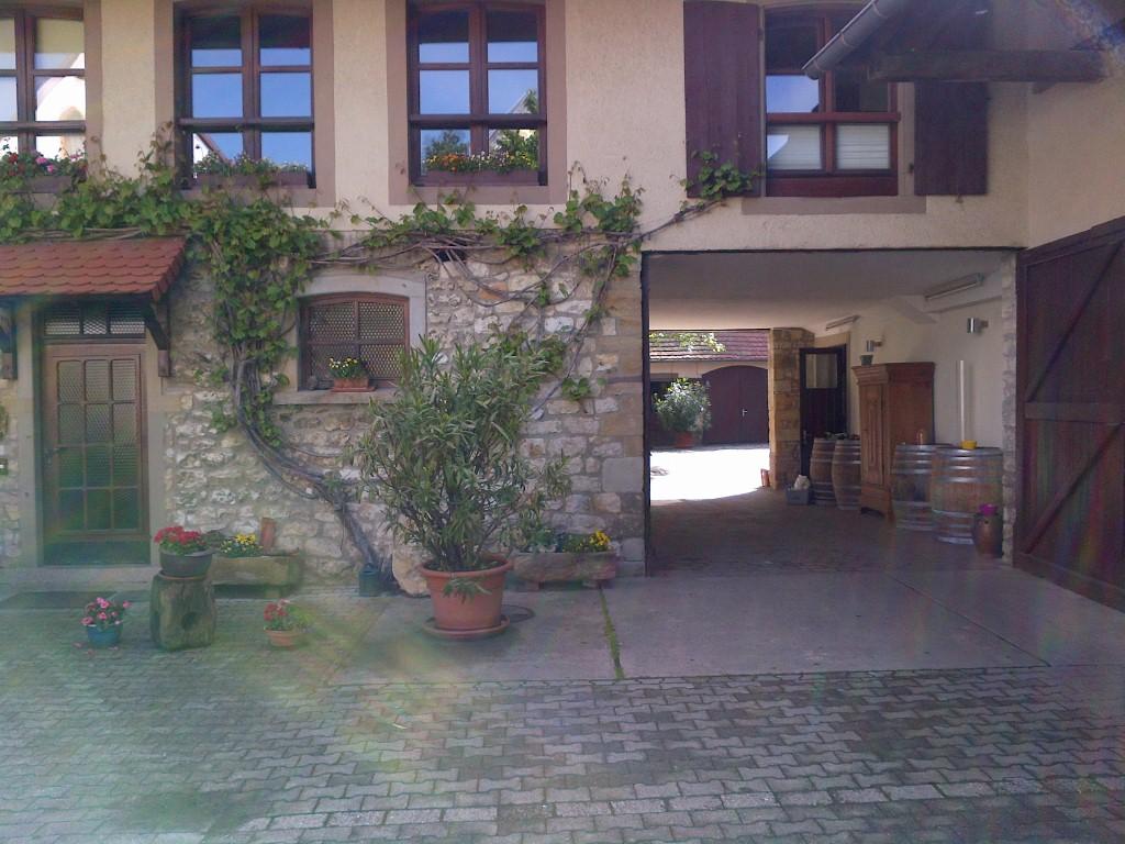 Stellplatz auf dem Weingut Geil