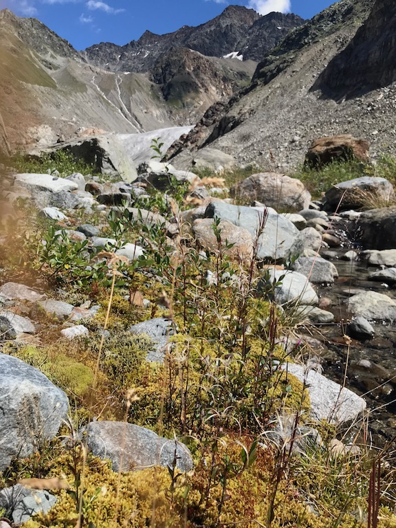 Wanderweg zum Gletscher